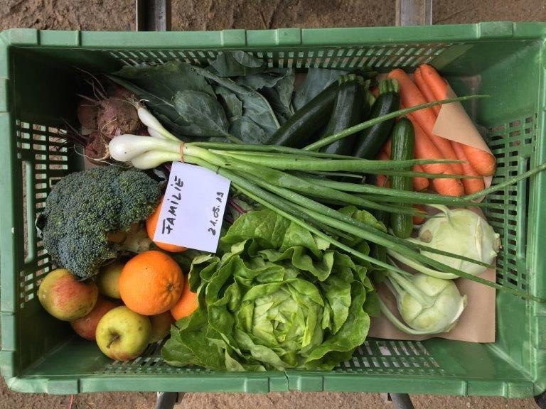 Es ist eine Gemüsekiste in der Größe Familie aus dem Monat Mai zu sehen