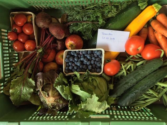 Eine Bio-abo Gemüseabo Kiste ist abgebildet in der Größe Familie
