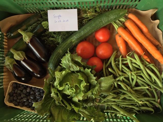 Eine Bioabo Gemüsekiste ist abgebildet in der Größe Single