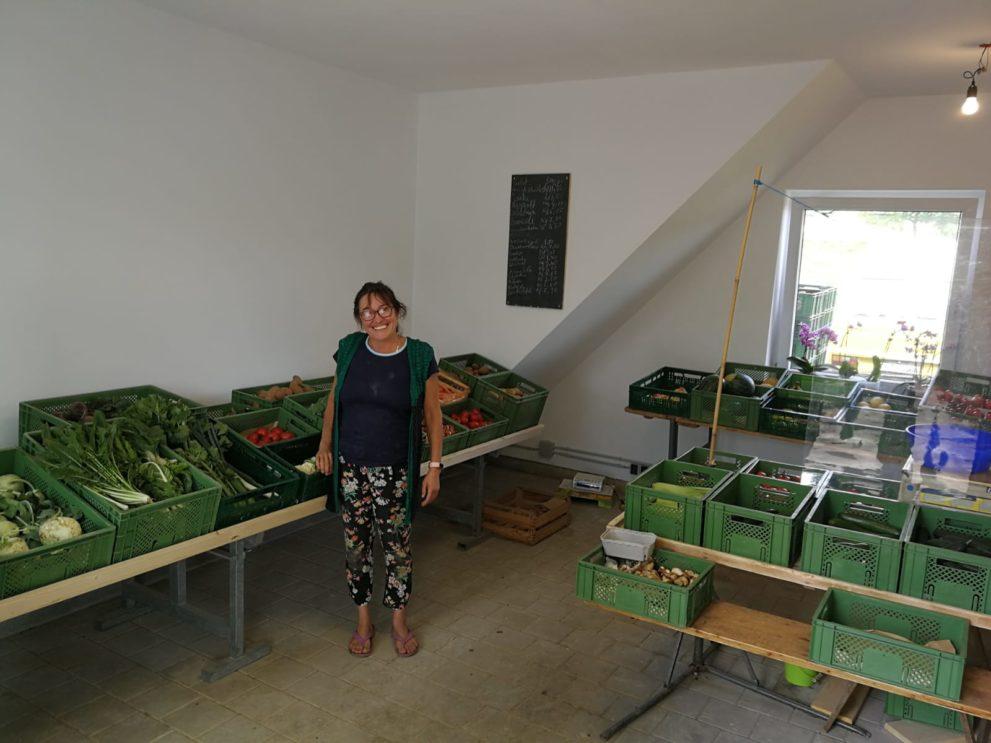 Innerhalb der Hofladens sind viele verschiedene Gemüse und Obstsorten zu sehen, die verkauft werden